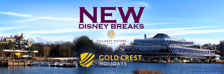 Gold Crest - New Disney Break