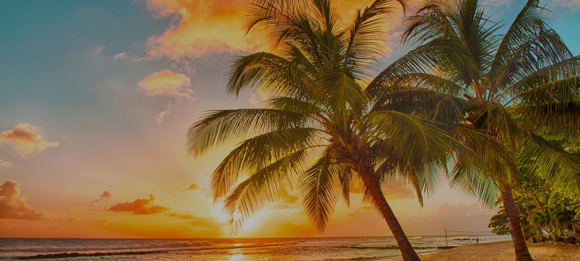 MSC Barbados