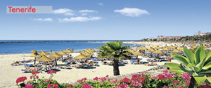 Destination of the week Tenerife