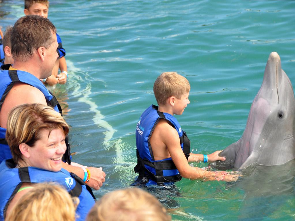 Dolphin Explorer in Punta Cana
