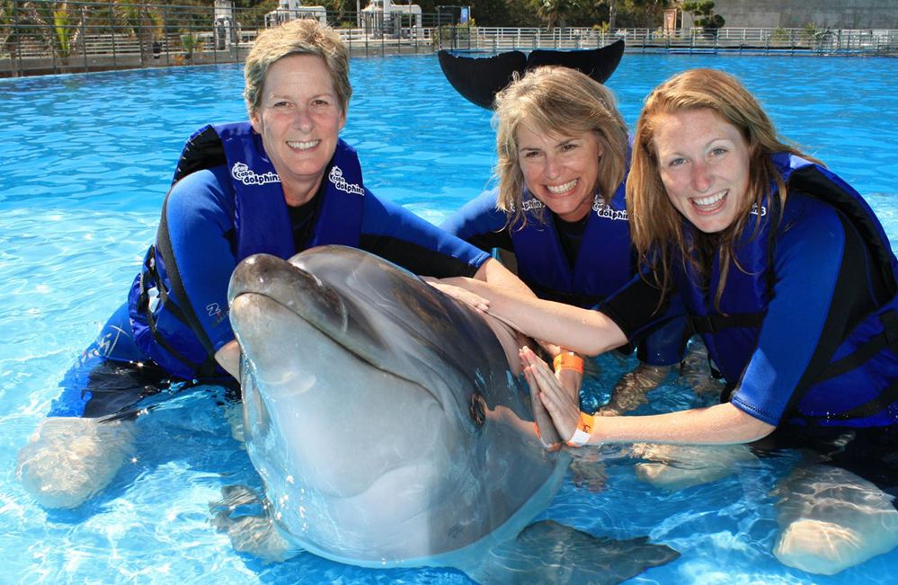 "Dolphin show"" title="