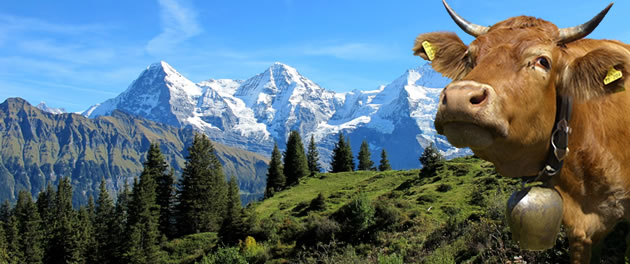 A view of the Eiger in Bernese Oberland, Switzerland