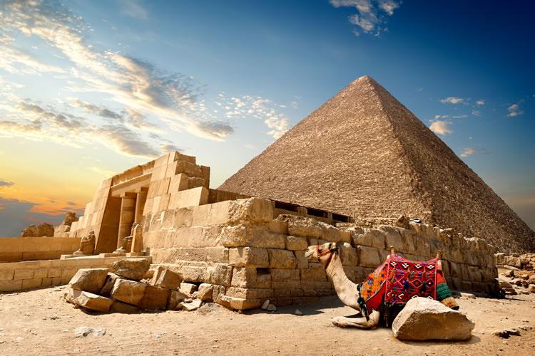 Egypt, Camel & pyramid
