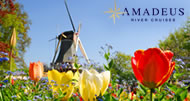 Amadeus - Tulips & Windmills