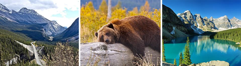 Canadian Rocky Mountains Self Drive & Celebrity Cruises Alaska - Cruise & Stays