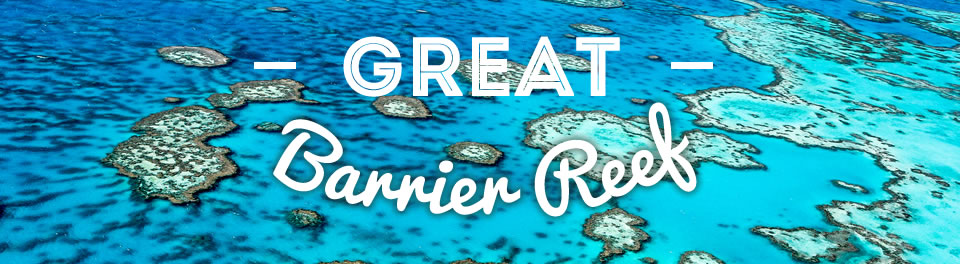 P Amp O Cruises Australia Great Barrier Reef