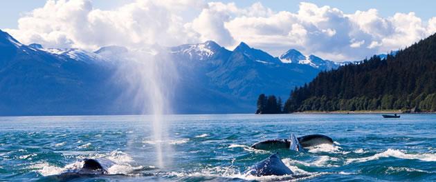 Celebrity Eclipse - Alaska