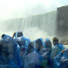 Maid in the Mist