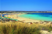 Click to find out more about Ayia Napa