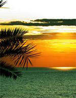 Discount Sri Lanka Holidays