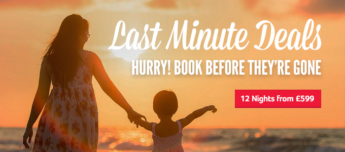 Generic | Last Minute Deals | Hurry! Book before they're gone