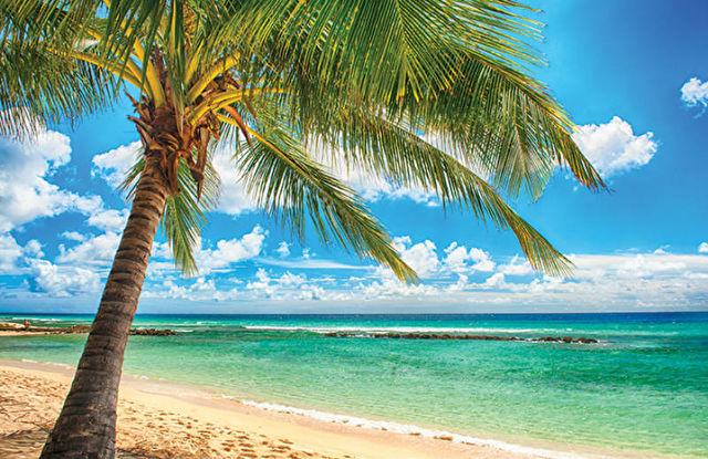 Barbados to Italy Transatlantic