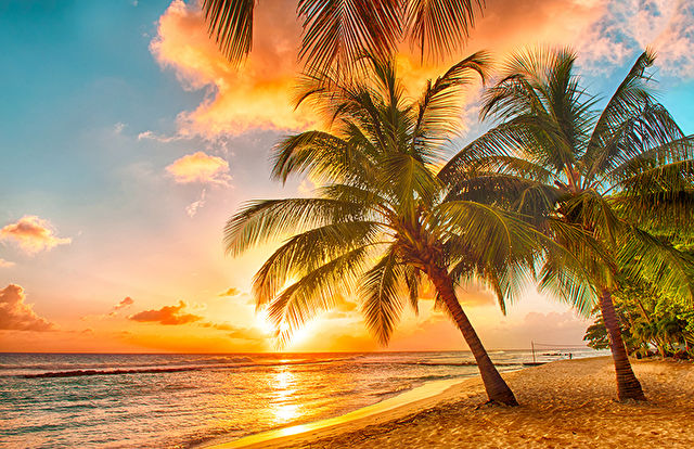 Fort Lauderdale Stay & Eastern Caribbean Cruise