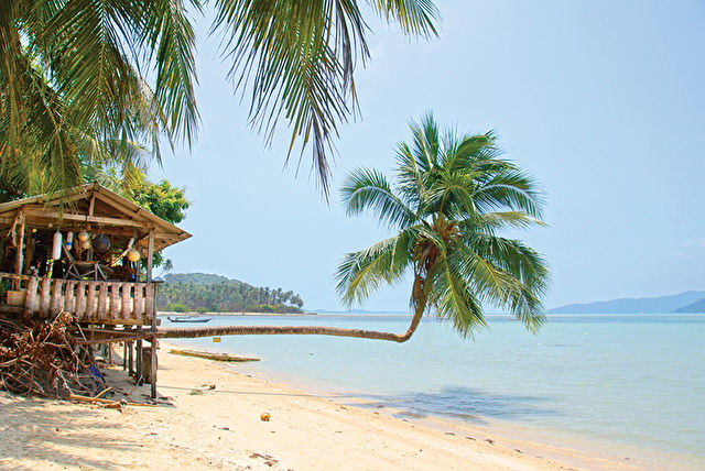Western Caribbean Stay & Cruise